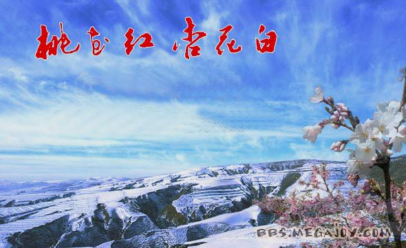 石占明央视再唱《桃花红杏花白》,听哭了!