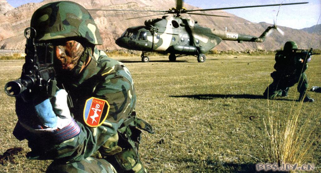中国特种部队小说-求真实反映中国特种兵的小说?